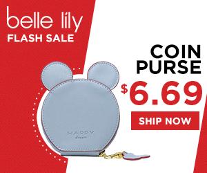 coin purse flash sale